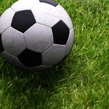 ball-on-grass